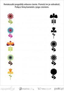 polacz_cienie_kwiatki_1