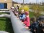 Gumisie w oczyszczalni 23.04.2010